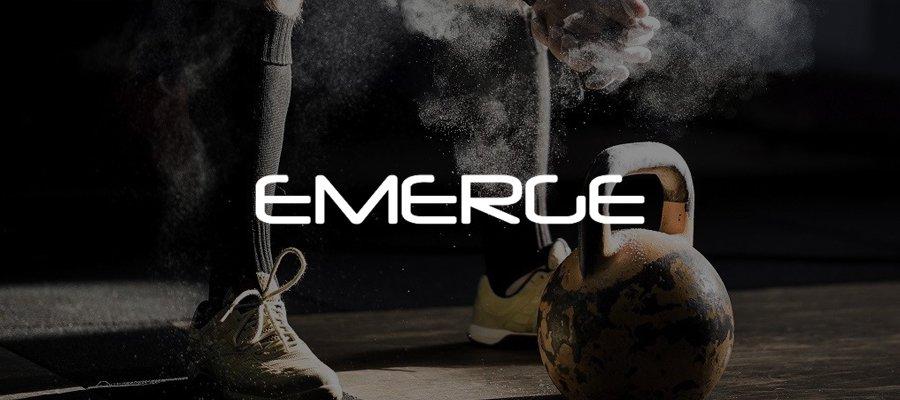 emerge amazon fba business case study